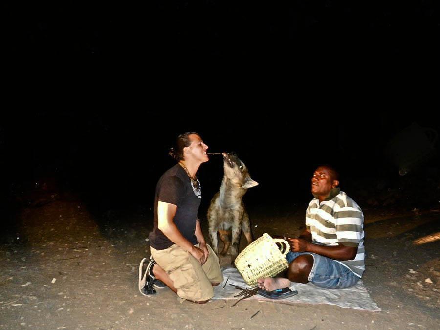 Hyenas Ethiopia