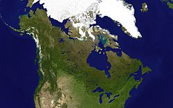 Satellite Image of Canadian Forests
