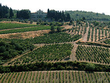 The Wine Country Of Italy