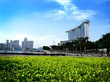 A_City_View_of_Singapore