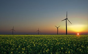 Wind, Solar, And Biomass Are Three Emerging Renewable Sources Of Energy.