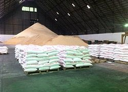 Sacks Of Raw Sugar In The Philippines