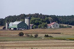 A dairy farm in Obtario
